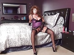 Sexy shqip stockings